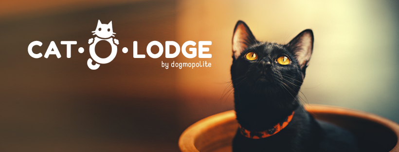 cat-o-lodge